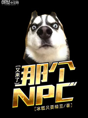 那个NPC又来了